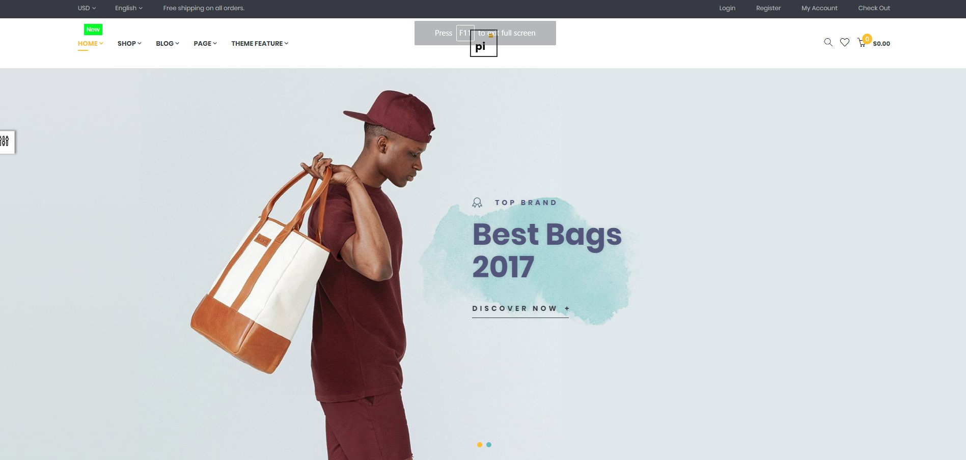 Ap Pi Bags theme