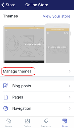 how to duplicate themes